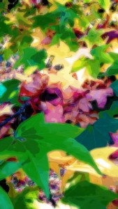 Autumn Fires_11-14-11.39.56